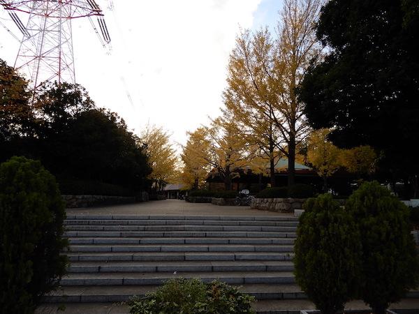 アゼリア葛西–Ⅱ周辺公園