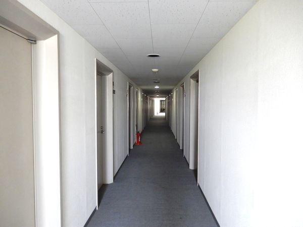 トラスティ田無-Ⅱの廊下